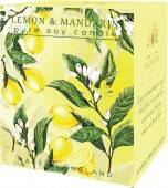 Lemon & Mandarin - pure soy candle
